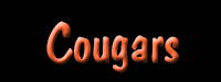 Cougars Nameplate